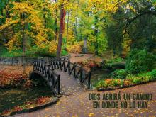 018Dios-abrira-un-camino-640v